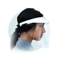 challis-visor-768x1024.png