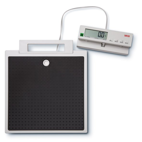 SECA 899 Robust Flat Scale with Cabled Remote Display