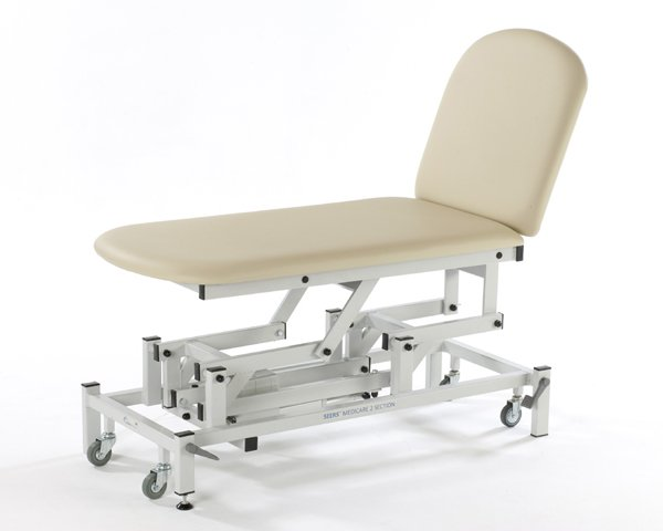 Seers Medicare 2 Section Electric Couch with electric backrest